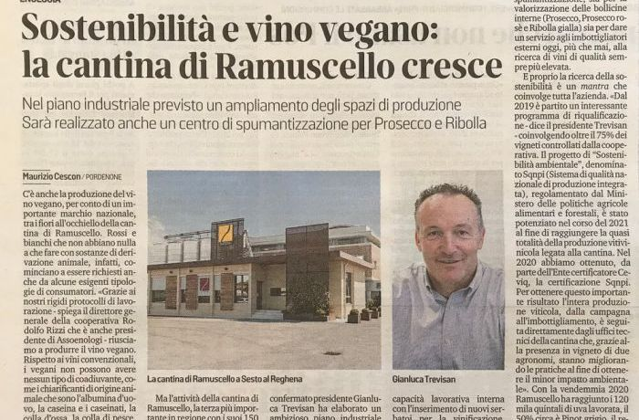 Sostenibilità e vino vegano.